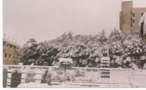 Gerasa nieve en Amman (FILEminimizer)