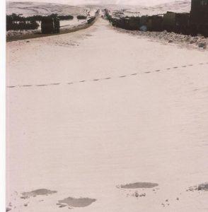 Nieve en el desierto, caravana en la ruta 3 (FILEminimizer)